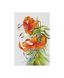 "Joanne Porter 'Tiger Lilies' Canvas Art - 12"" x 19"""
