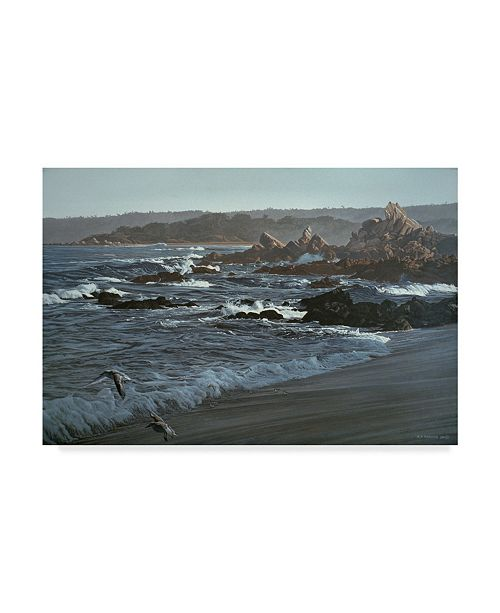 """Trademark Global Ron Parker 'Monterrey Dawn' Canvas Art - 12"""" x 19"""""""