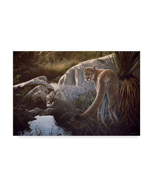 "Trademark Global Ron Parker 'Creekside Cougar' Canvas Art - 12"" x 19"""