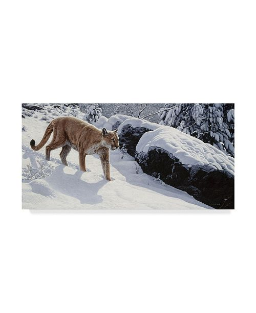 "Trademark Global Ron Parker 'Soft Snow Cougar' Canvas Art - 12"" x 24"""