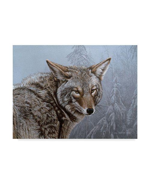 "Trademark Global Ron Parker 'Coyote Portrait' Canvas Art - 14"" x 19"""