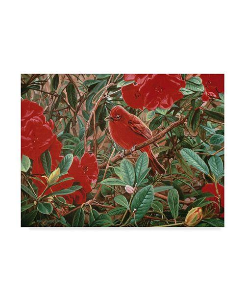 "Trademark Global Ron Parker 'Summer Tanager' Canvas Art - 14"" x 19"""