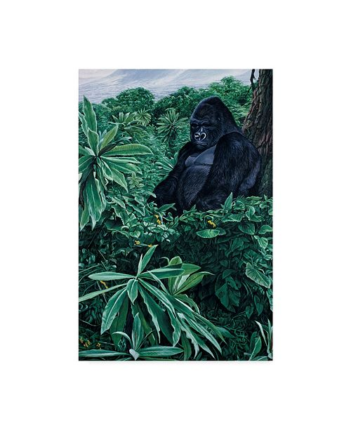 "Trademark Global Ron Parker 'Gorilla' Canvas Art - 12"" x 19"""
