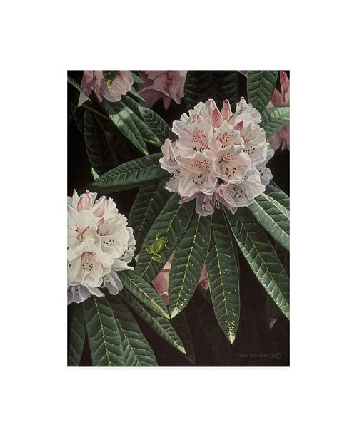 """Trademark Global Ron Parker 'Rhododendron' Canvas Art - 14"""" x 19"""""""