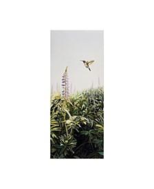 "Rusty Frentner 'Hummingbird' Canvas Art - 14"" x 32"""