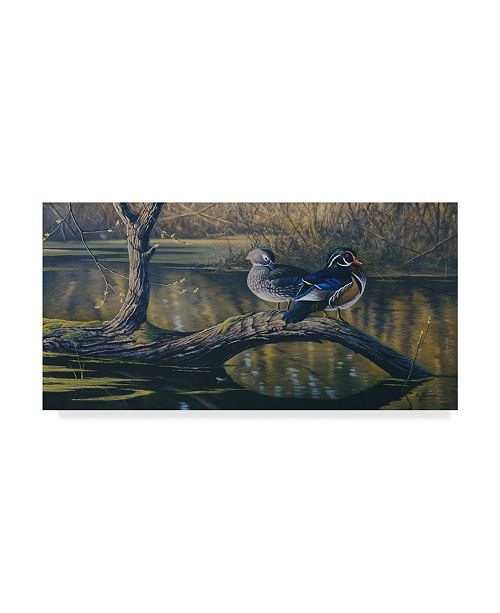 "Trademark Global Wilhelm Goebel 'Spring Pair Wood Ducks' Canvas Art - 10"" x 19"""