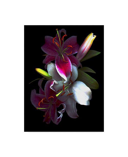 "Trademark Global Susan S. Barmon 'Lilies' Canvas Art - 14"" x 19"""