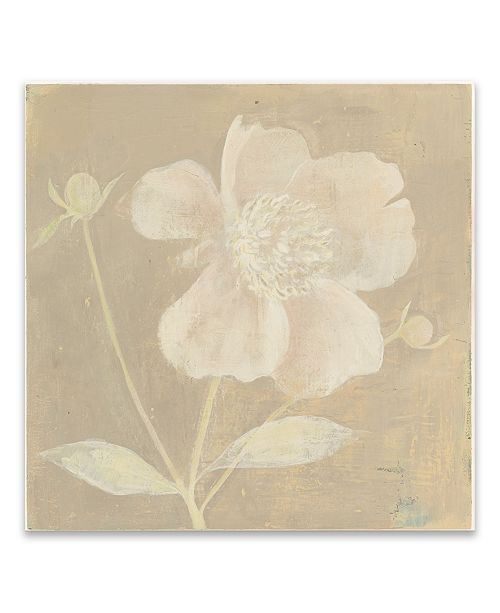 "Artissimo Designs Neutral Peony Printed Canvas Art - 27"" W x 27"" H x 1.25"" D"