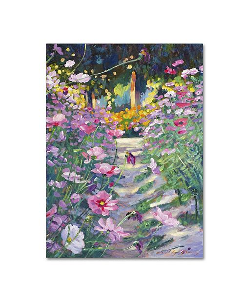 "Trademark Global David Lloyd Glover 'Garden Path of Cosmos' Canvas Art - 24"" x 32"""