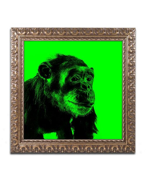 """Trademark Global Claire Doherty 'Chimp No 5' Ornate Framed Art - 16"""" x 16"""""""