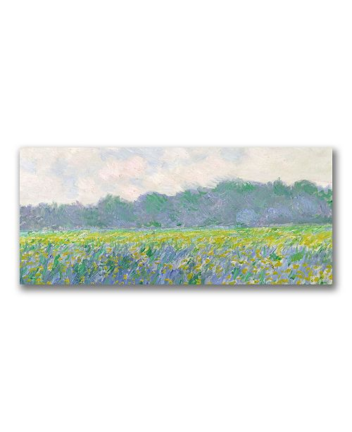 """Trademark Global Claude Monet 'Field of Yellow Irises at Giverny' Canvas Art - 24"""" x 10"""""""