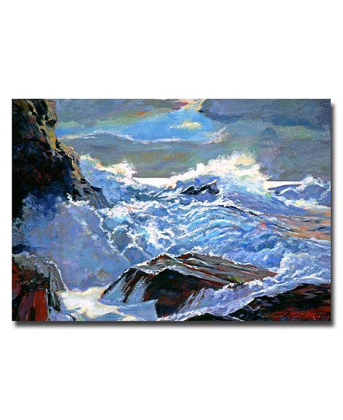 "Trademark Global David Lloyd Glover 'Foaming Sea' Canvas Art - 32"" x 22"""