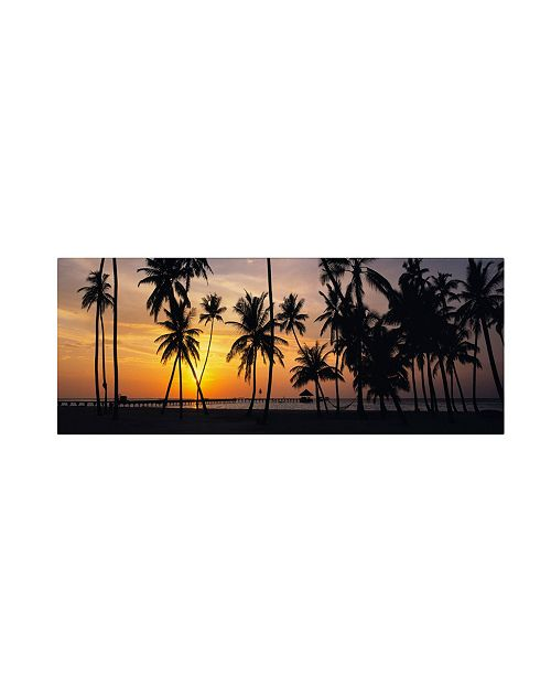 "Trademark Global David Evans 'Palm Dream' Canvas Art - 47"" x 16"""
