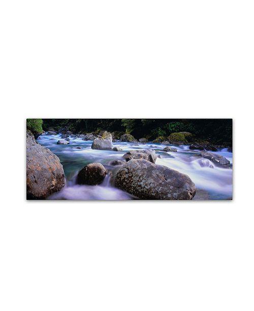 "Trademark Global David Evans 'Hollyford River-NZ' Canvas Art - 19"" x 6"""