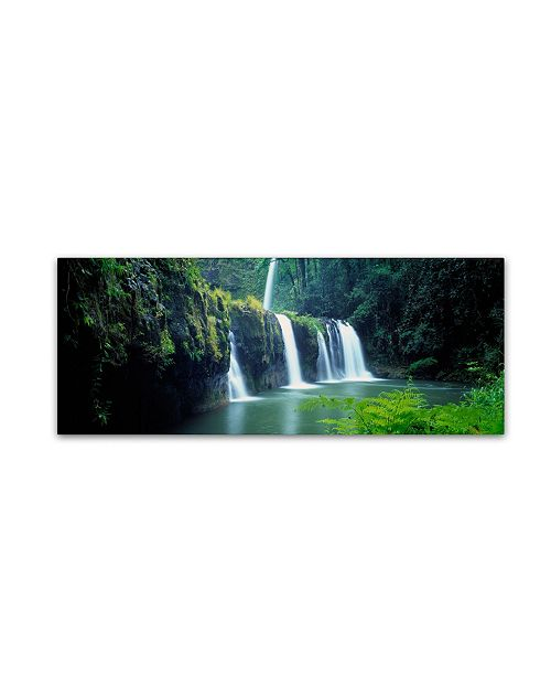 "Trademark Global David Evans 'Nandroya Falls-Queensland' Canvas Art - 24"" x 8"""