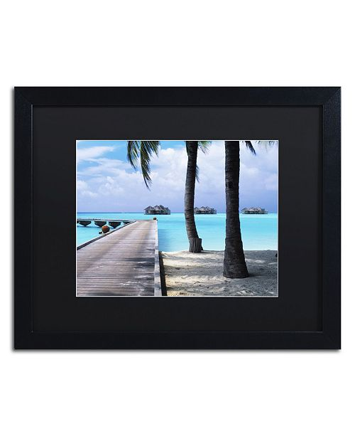 """Trademark Global David Evans 'Pathway to Paradise' Matted Framed Art - 16"""" x 20"""""""