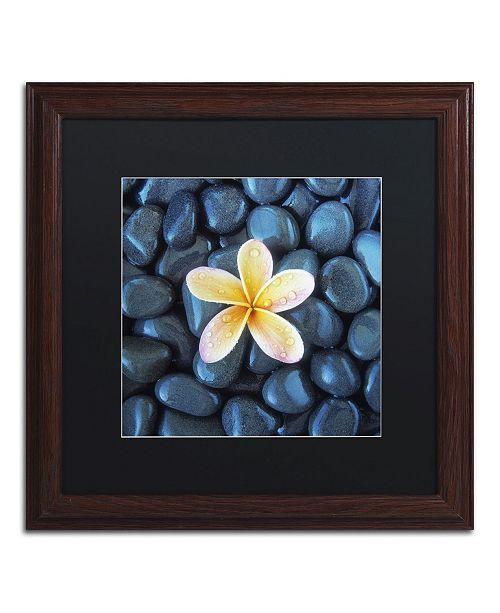 "Trademark Global David Evans 'Plumeria & Pebbles 2' Matted Framed Art - 16"" x 16"""