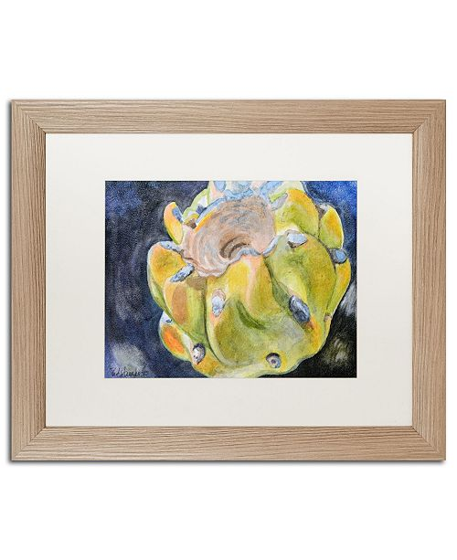 "Trademark Global Jennifer Redstreake 'Cactus Fruit' Matted Framed Art - 16"" x 20"""