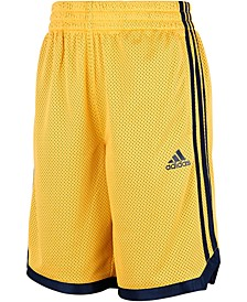 Big Boys Mesh Shorts