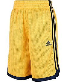 adidas Big Boys Mesh Shorts