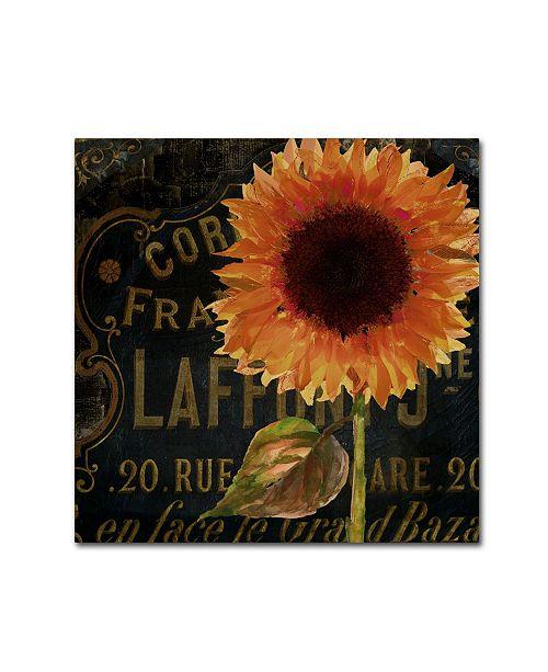 "Trademark Global Color Bakery 'Sunflower Salon II' Canvas Art - 35"" x 35"""