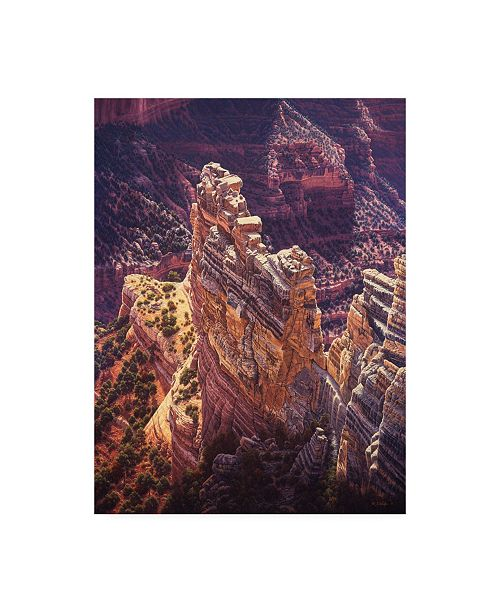 "Trademark Global R W Hedge Heart of Gold Canyon Canvas Art - 36.5"" x 48"""