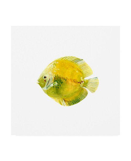 "Trademark Global Emma Scarvey Discus Fish I Canvas Art - 15.5"" x 21"""