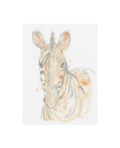 "Trademark Global June Erica Vess Blush Savannah IV Canvas Art - 36.5"" x 48"""