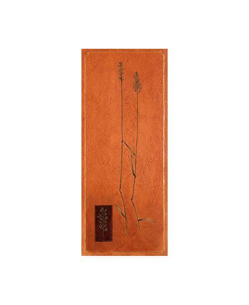 "Trademark Global Pablo Esteban Blades of Grass on Orange Canvas Art - 19.5"" x 26"""