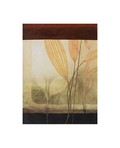 "Trademark Global Pablo Esteban Leaves with Border Canvas Art - 27"" x 33.5"""