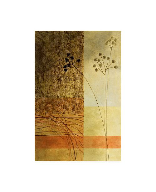 "Trademark Global Pablo Esteban Wild Flowers on Orange Canvas Art - 27"" x 33.5"""