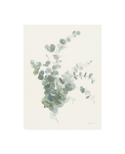 "Trademark Global Danhui Nai Scented Sprig II Cool Canvas Art - 15.5"" x 21"""