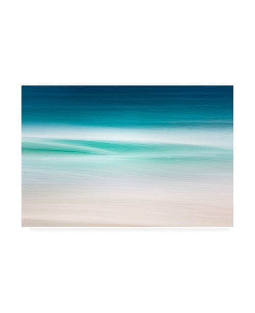 "Trademark Global Lynne Dougla Atlantic Drift Canvas Art - 36.5"" x 48"""