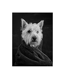 "Edward M. Fieldin Portrait of a Westy Dog Canvas Art - 27"" x 33.5"""