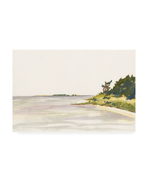 "Trademark Global Dianne Miller Solitary Coastline I Canvas Art - 37"" x 49"""
