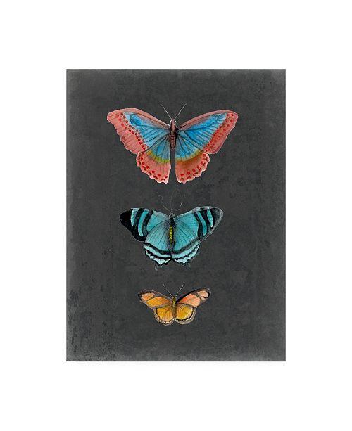 """Trademark Global Naomi Mccavitt Butterflies on Slate III Canvas Art - 20"""" x 25"""""""