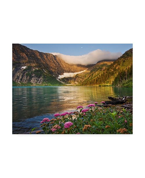 "Trademark Global Doug Roane Pink Flowers Fresh Start Canvas Art - 37"" x 49"""