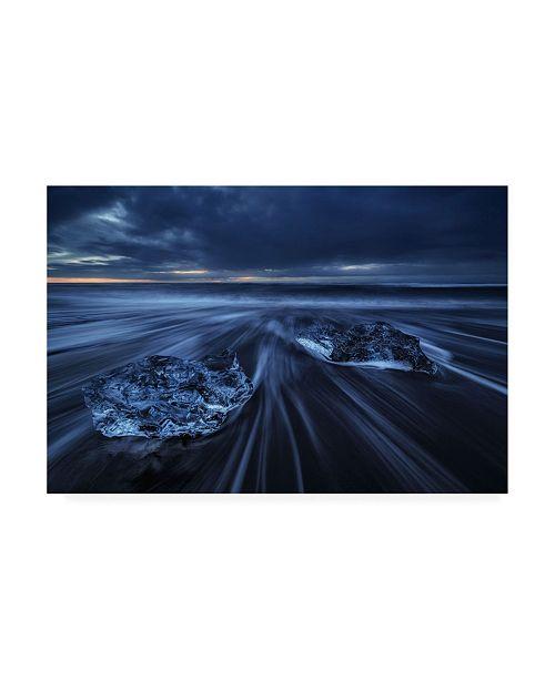 """Trademark Global Juan Pablo De Wild Ice Canvas Art - 37"""" x 49"""""""