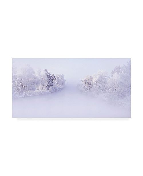 "Trademark Global Norbert Maier Deep Winter Canvas Art - 15"" x 20"""