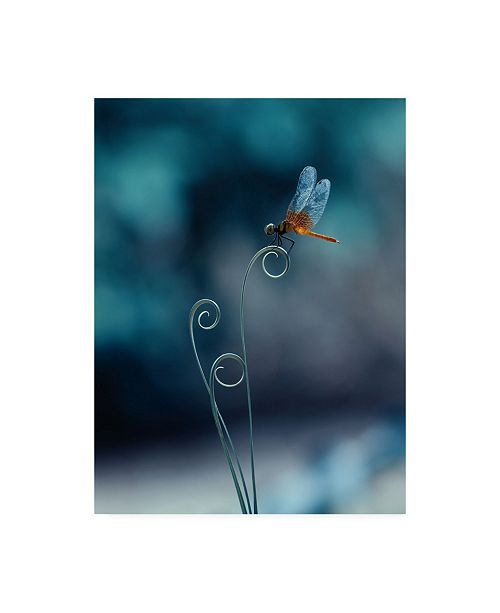 "Trademark Global Ridho Arifuddin Dragonfly Bokeh Canvas Art - 15"" x 20"""