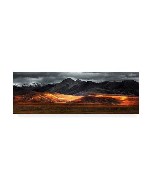 "Trademark Global Selinos Pano Canvas Art - 20"" x 25"""