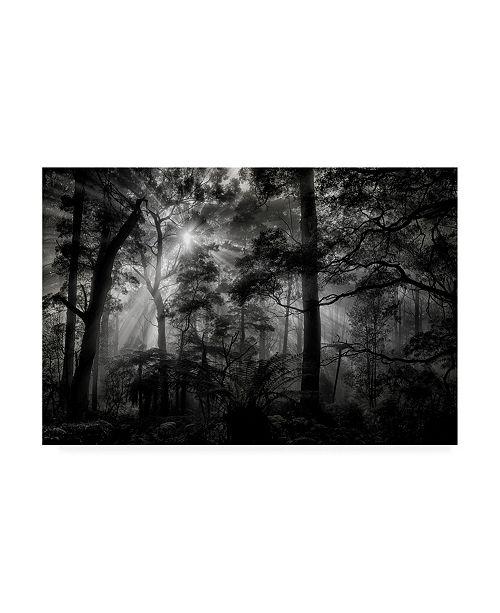 "Trademark Global Mathilde Guillemot Primary Forest Canvas Art - 20"" x 25"""
