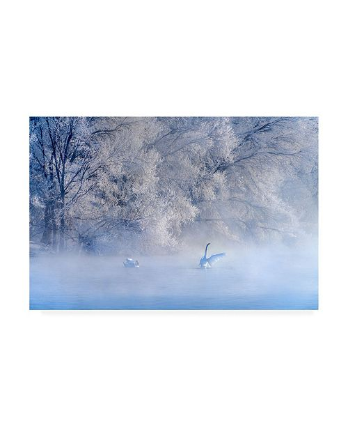 "Trademark Global Hua Zhu Swan Lake Hoarfrost Canvas Art - 20"" x 25"""