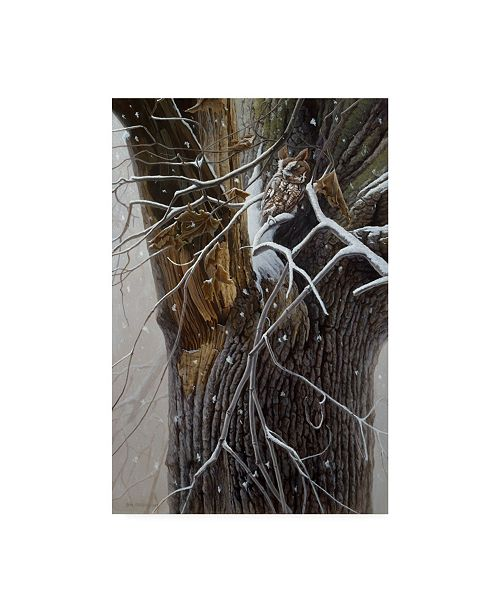 "Trademark Global Michael Budden Winter Branches Canvas Art - 15"" x 20"""