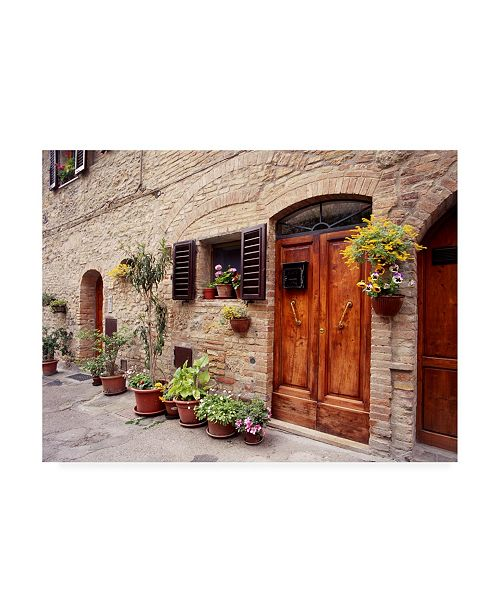 """Trademark Global Monte Nagler Flowers on the Wall Tuscany Italy Color Canvas Art - 20"""" x 25"""""""