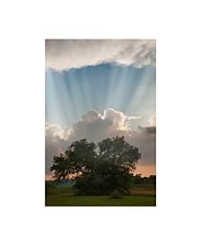 "Monte Nagler Evening Sunbeams Sturgis Michigan Canvas Art - 37"" x 49"""