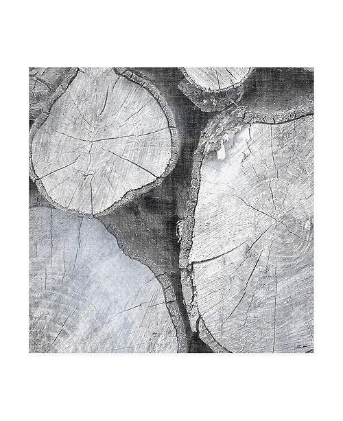 "Trademark Global John Butler Logging Light II Canvas Art - 15"" x 20"""