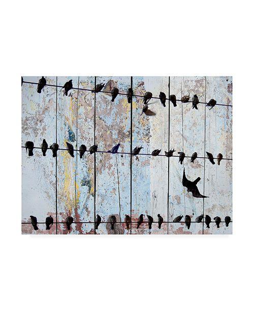 "Trademark Global Irena Orlov Birds on Wood IV Canvas Art - 37"" x 49"""