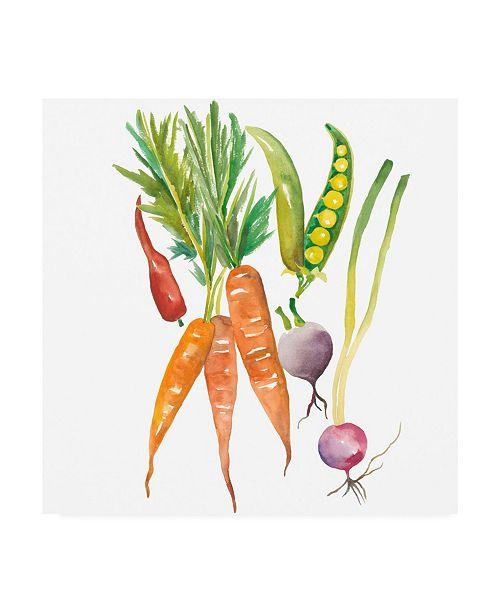 "Trademark Global Chariklia Zarris Harvest Medley IV Canvas Art - 27"" x 33"""