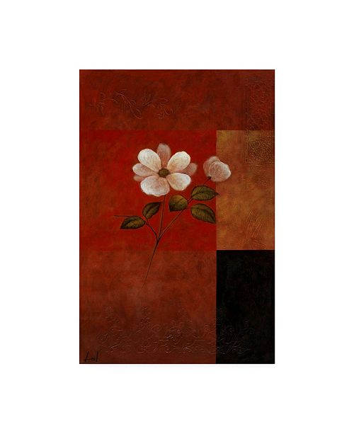 "Trademark Global Pablo Esteban White Floral Bold Red 1 Canvas Art - 27"" x 33.5"""